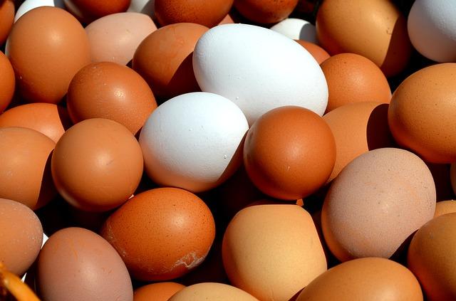 čerstvá domácí vejce