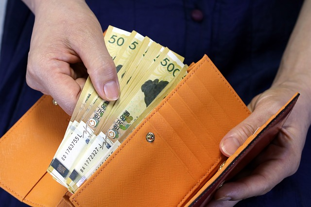 bankovky v béžové peněžence