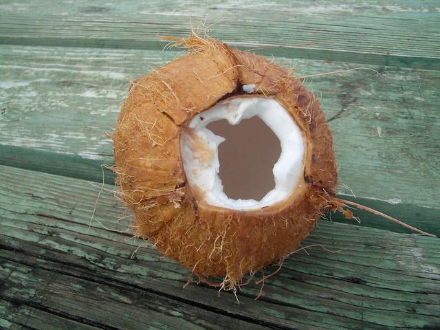 porušený kokosový ořech