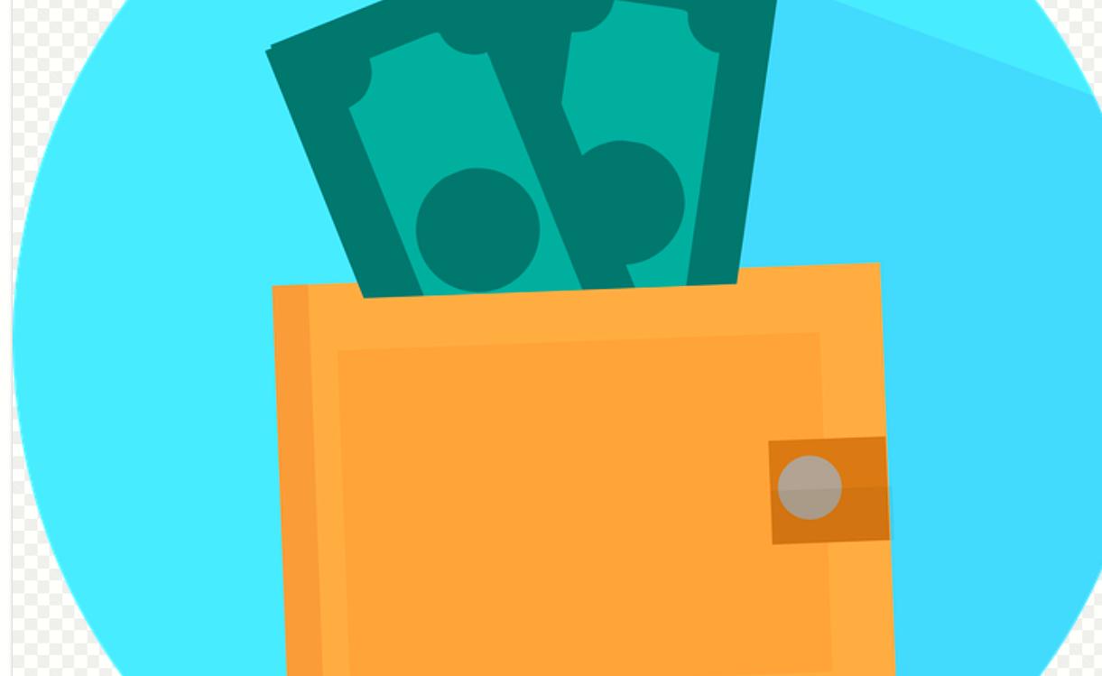 platby peněženka